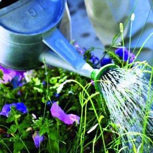 zalijevanje-cvijeca