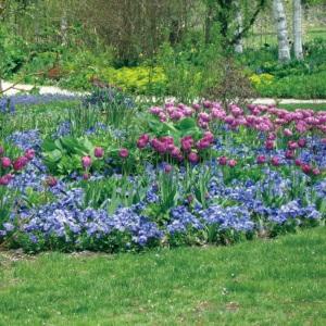 vizualno povecajte vrt