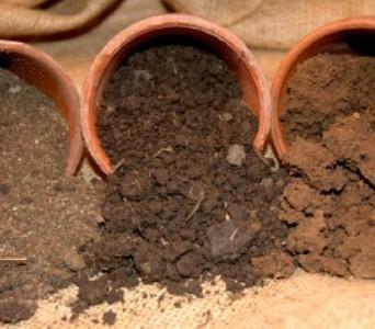 vrste tla